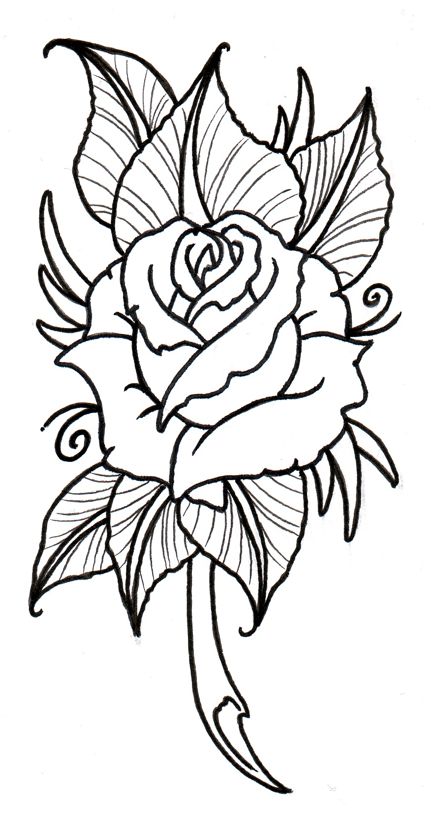 Rose Black And White Clipart | Free download best Rose Black And ...