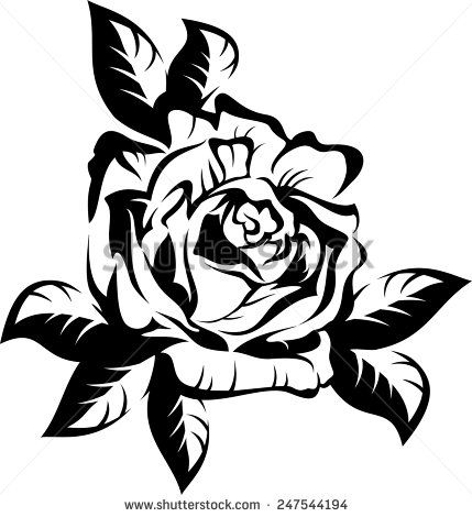 Rose Black And White Outline