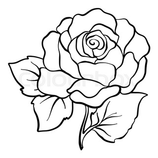 320x320 Black Silhouette Outline Rose, Isolated On White Stock Vector