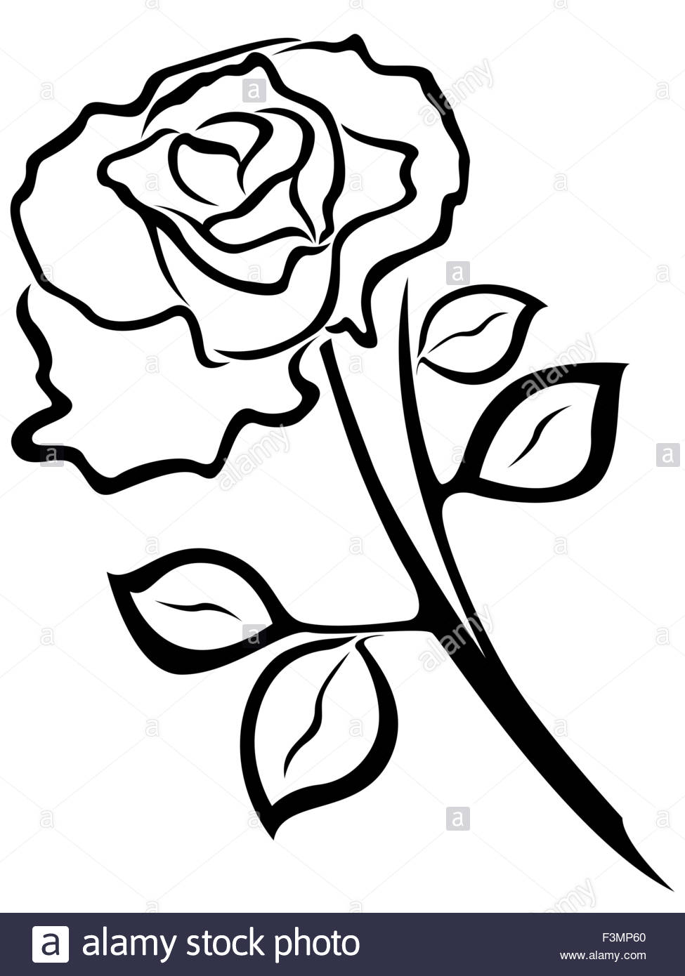975x1390 Black Vector Outline Of Rose Flower Isolated On A White Background