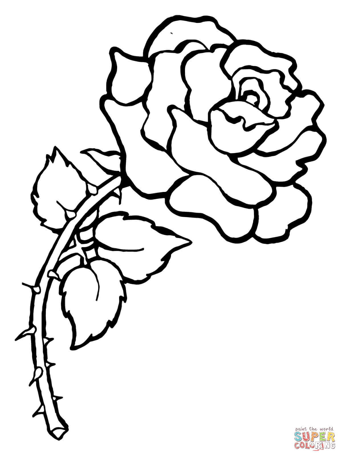 1200x1600 Drawn Rose Bush Thorn Outline