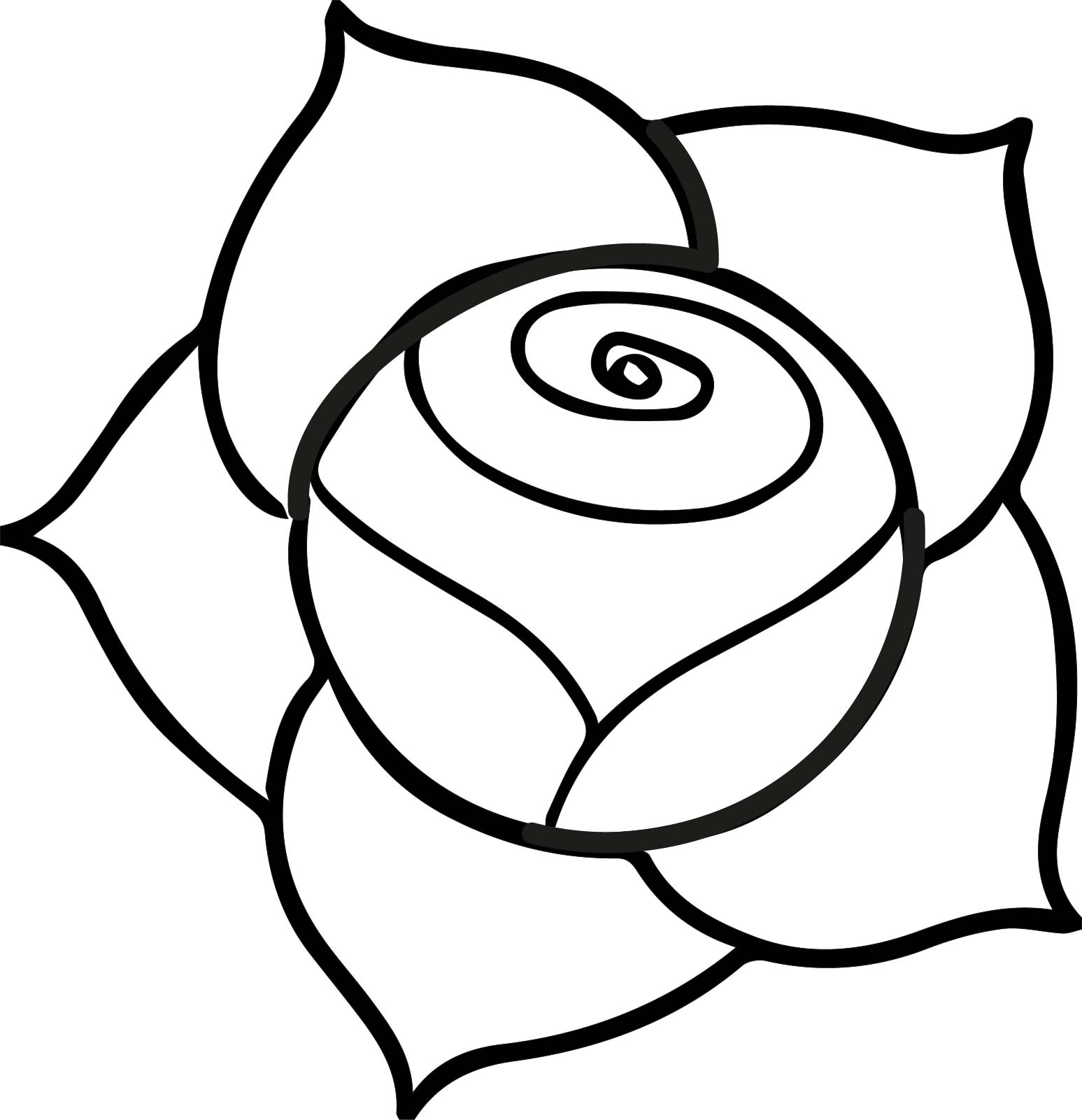 1547x1601 A Illustration Of A Pink Rose With Dark Outline On A White