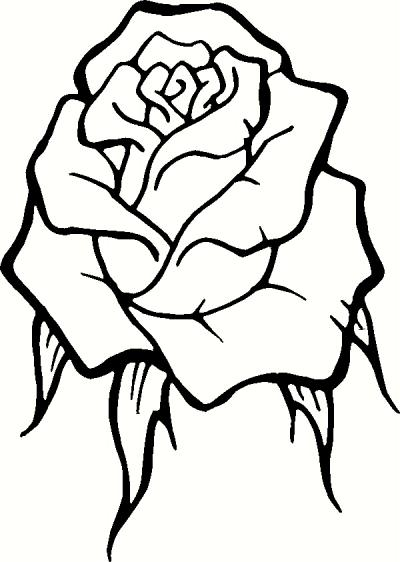 400x562 Rose Outline Wall Sticker, Vinyl Decal The Wall Works