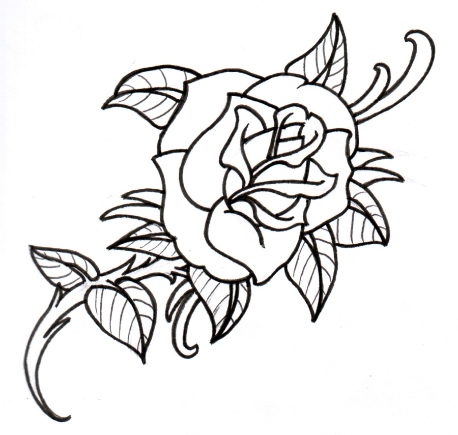 900x855 Hot Tattoos For Girls Outline Old School Rose Outline By