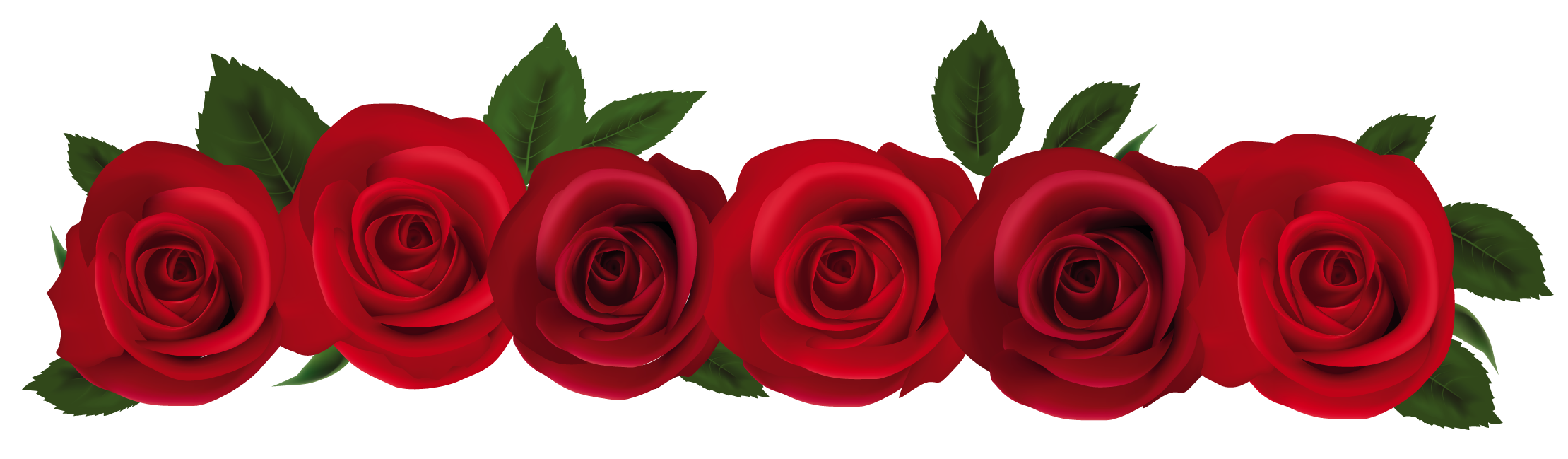 2219x649 Rose Border Clipart Png