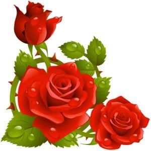 300x300 Top 75 Roses Clip Art