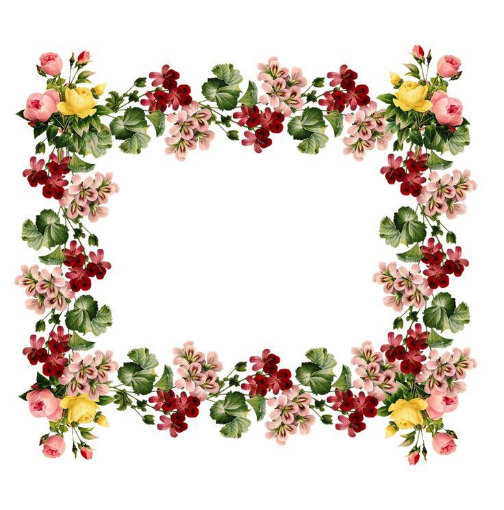 736x744 Vintage Flower Clipart Borders Vintage Color