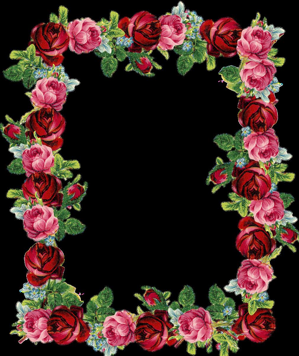 1010x1200 Free Digital Vintage Rose Frame And Border (Png With Transparent