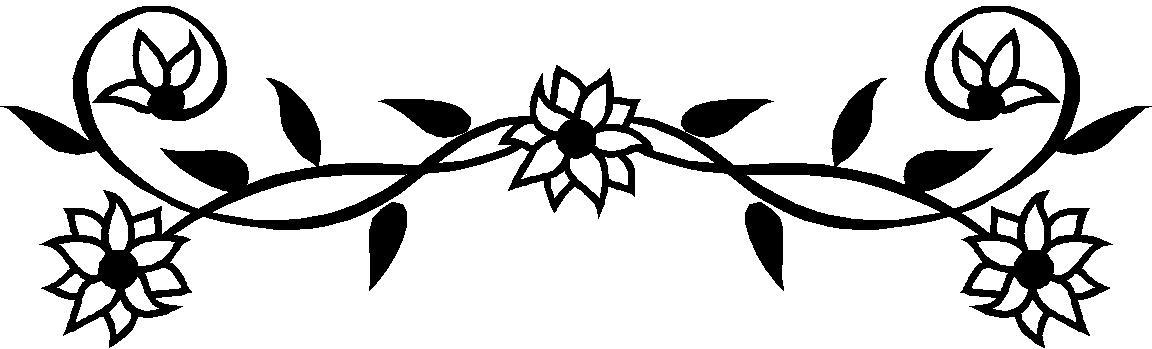 1152x349 White Flower Clipart Border