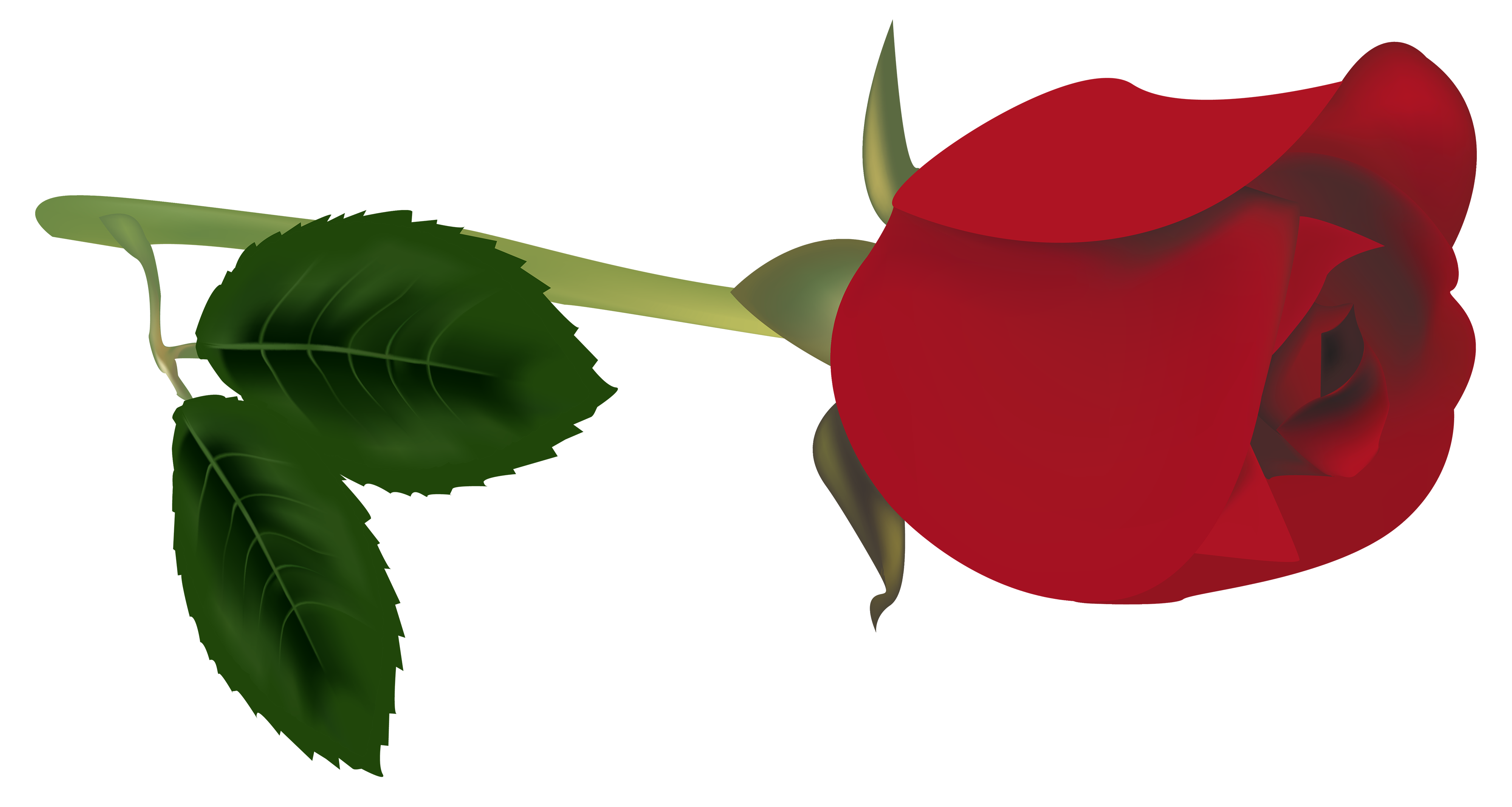 4000x2136 Red Rose Bud Png Clipart