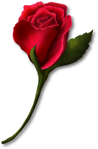 328x501 Red Rose Bud Painted Clipartu200b Gallery Yopriceville