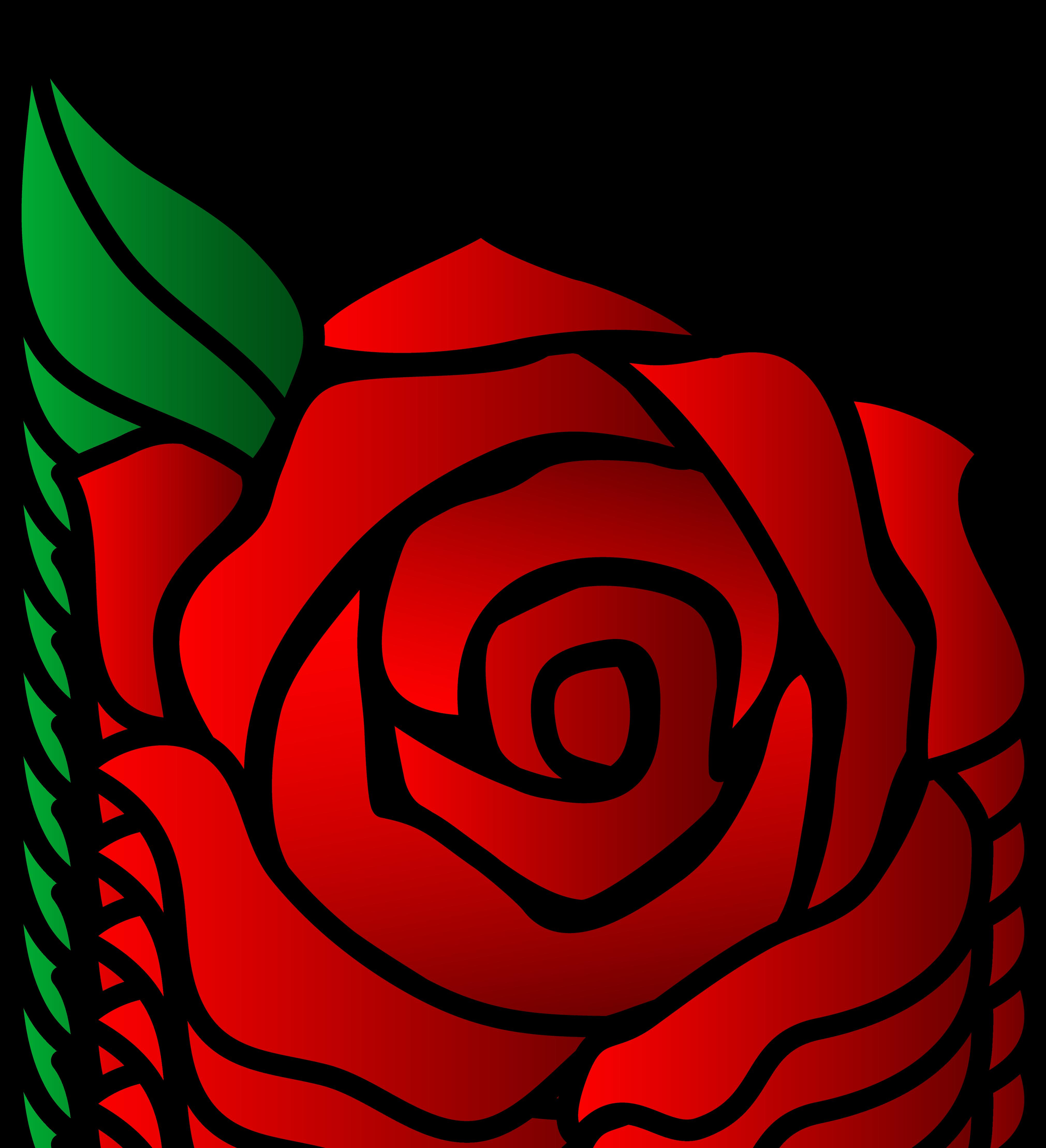 4042x4434 Red Rose Vector Art