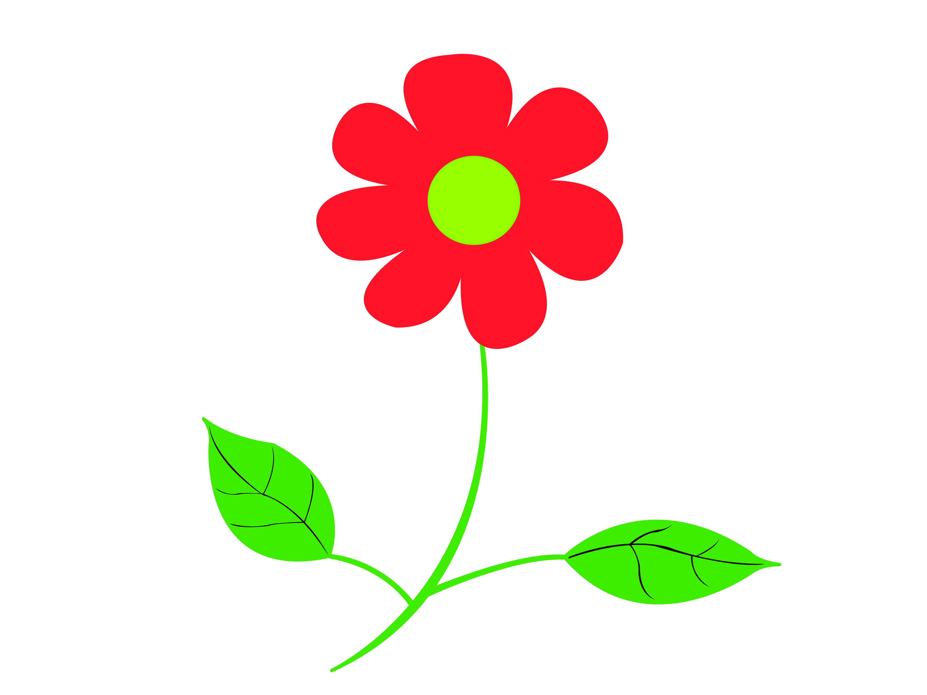3200x2400 How To Draw A Wild Flower 7 Steps (With Pictures)