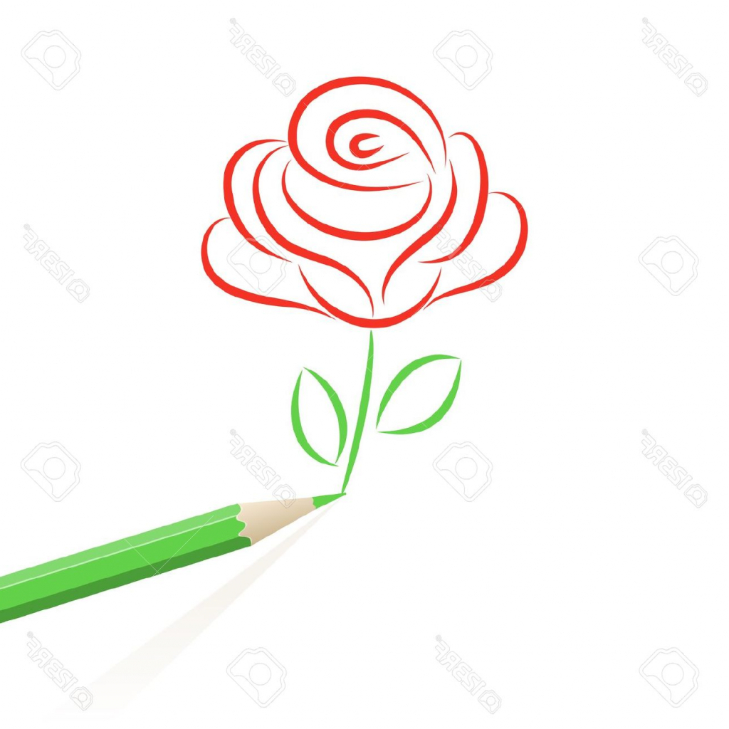 1024x1024 Rose Cartoon Drawing Red Rose Cartoon Clipartsco