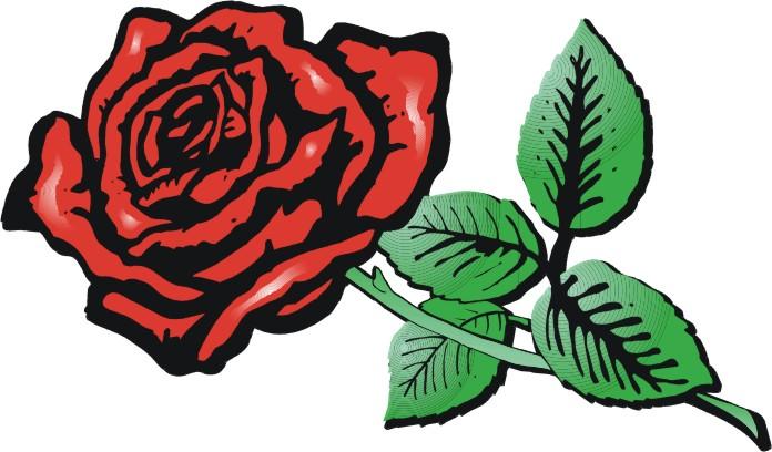 696x408 Rose Cartoon Images