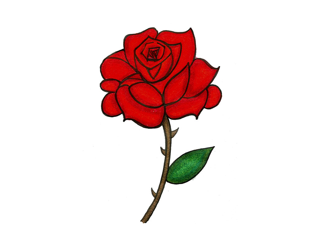 1024x768 Knumathise Realistic Red Rose Drawing Images