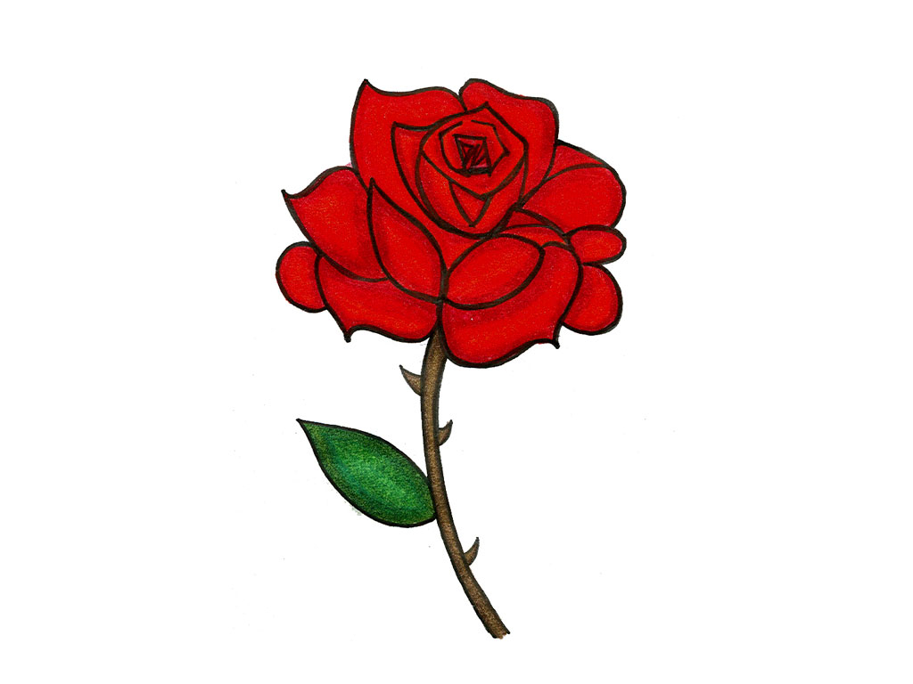 1024x768 A Cartoon Drawing Rose