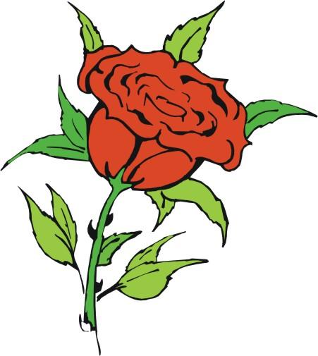451x505 Cartoon Rose Pictures