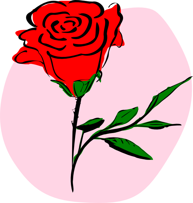 618x650 Drawn Red Rose Animated