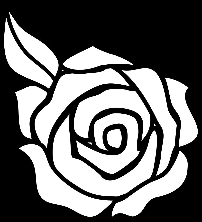 830x910 White Rose Clipart Cartoon