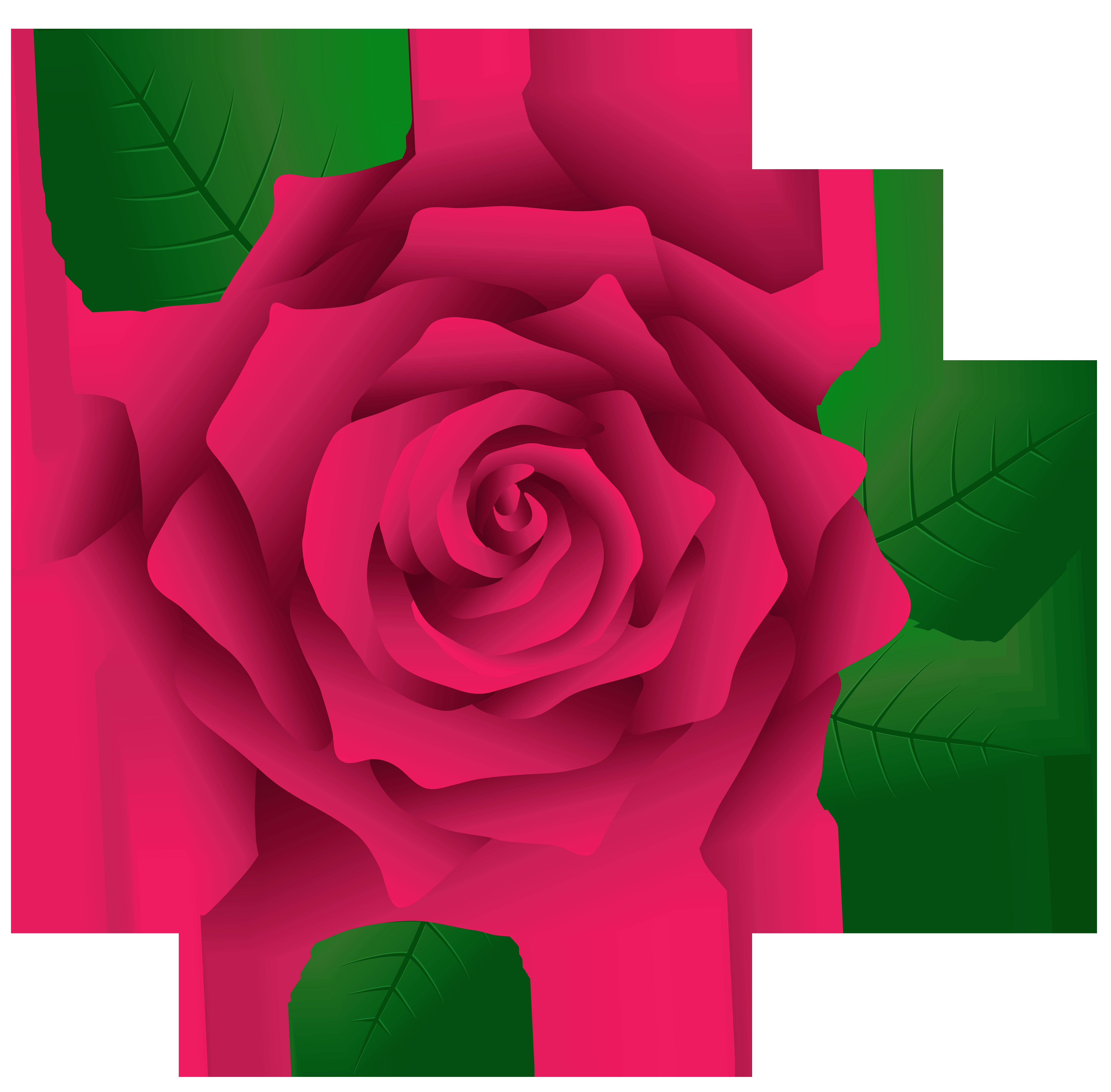5953x5854 Pink Rose Clip Art
