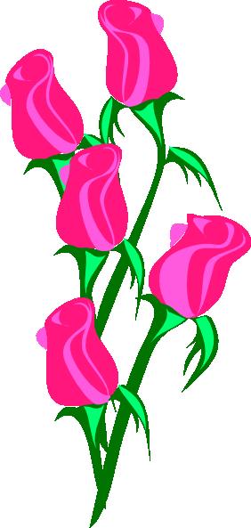282x593 Pink Rose Clip Art