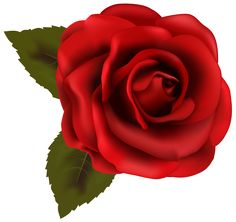 236x222 Crystal Red Rose Transparent Png Clip Art Image