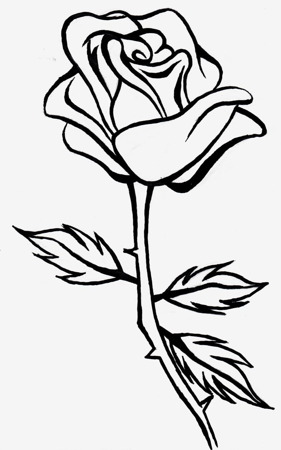 Simple Line Art Rose : Rose clipart black and white free download best