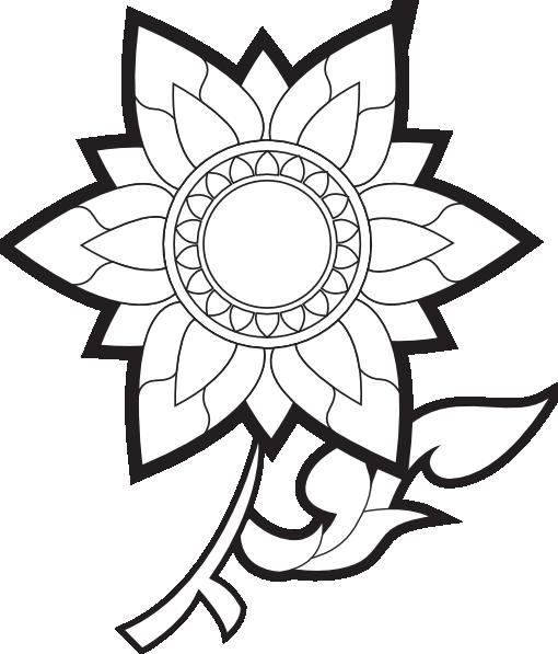 510x597 White Rose Clipart Decorative