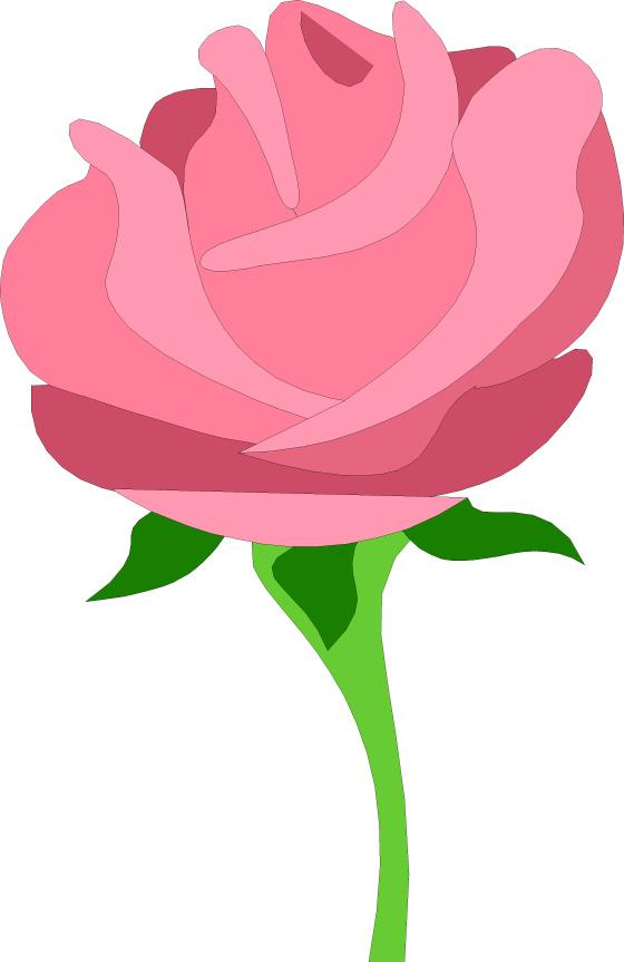 560x863 Rose Clipart