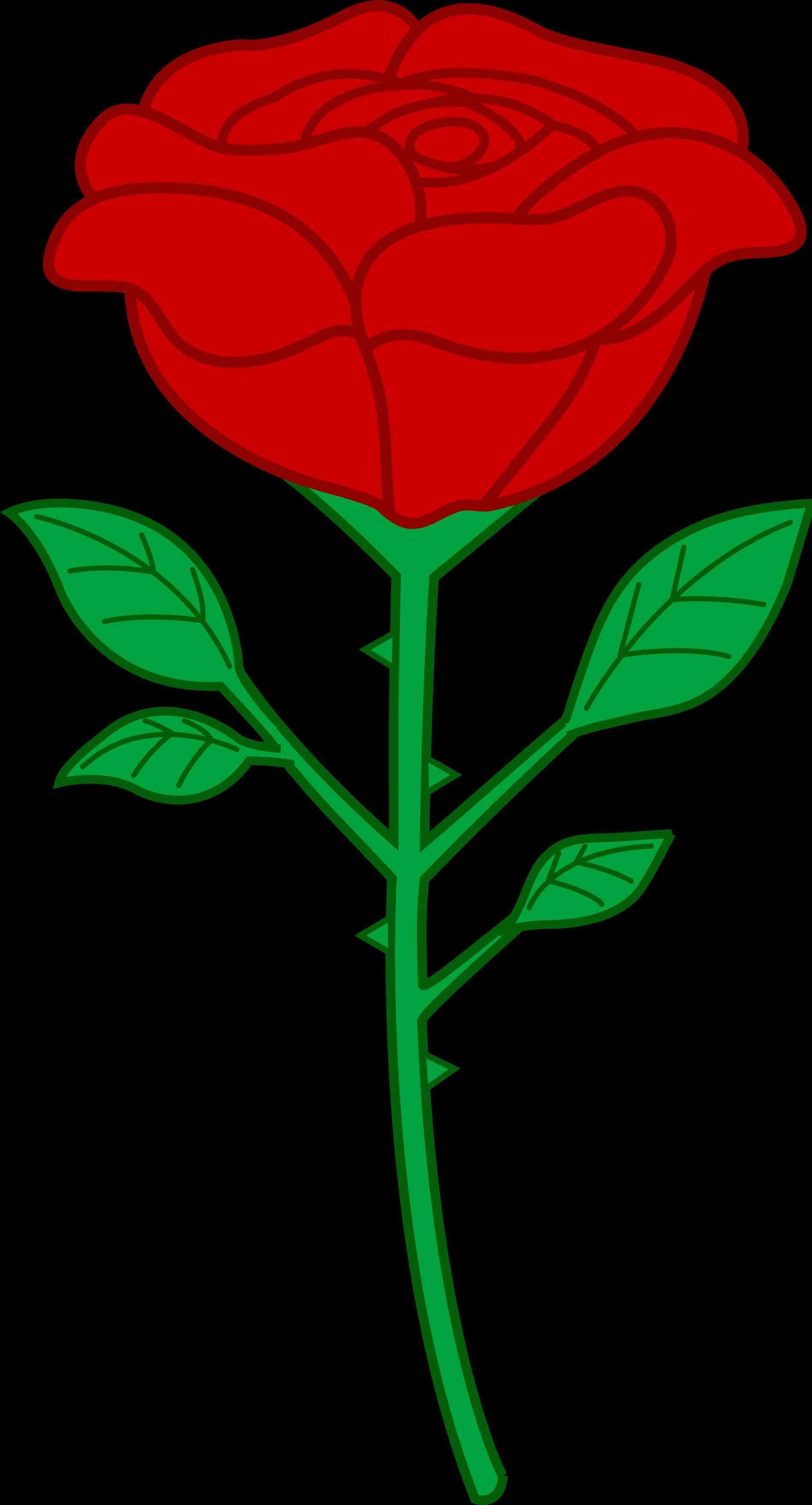 1899x3521 Knumathise Rose Clip Art Outline Images Knumathise Simple Rose