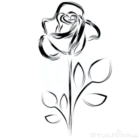 564x564 Rose Clipart Rose Black And White Image Rose Flower Images Clipart