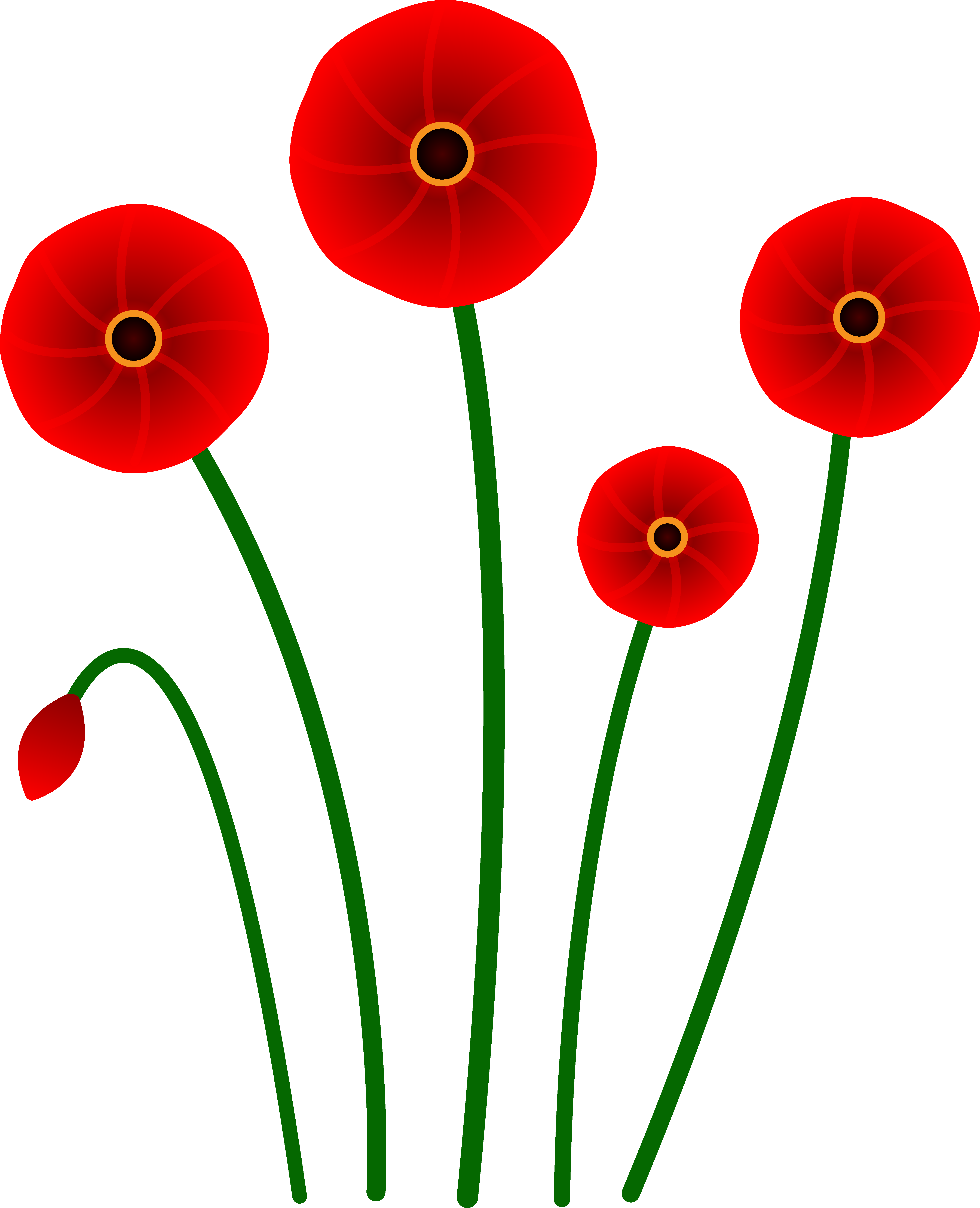 5560x6855 Red Flower Border Clip Art Free Clipart Images 3