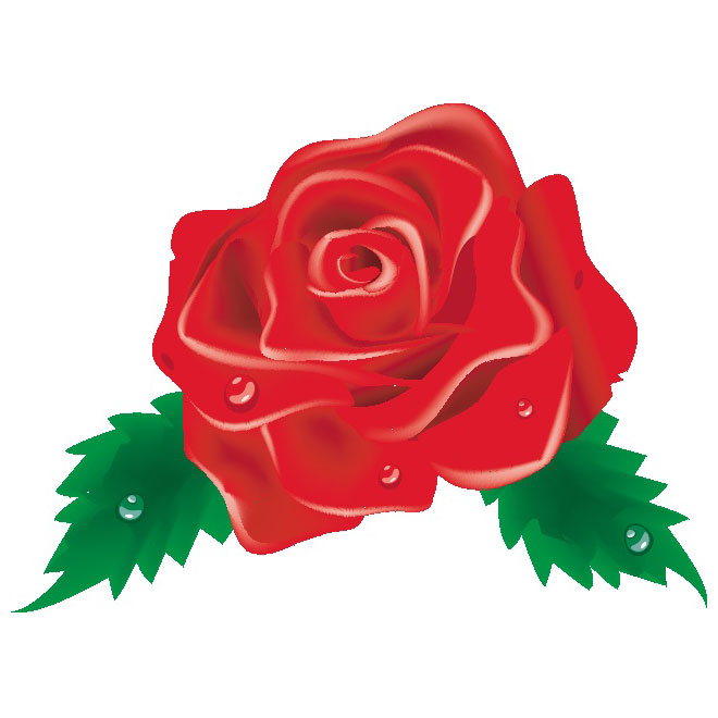 660x660 Red Rose Clip Art Image Free Vector Freevectors