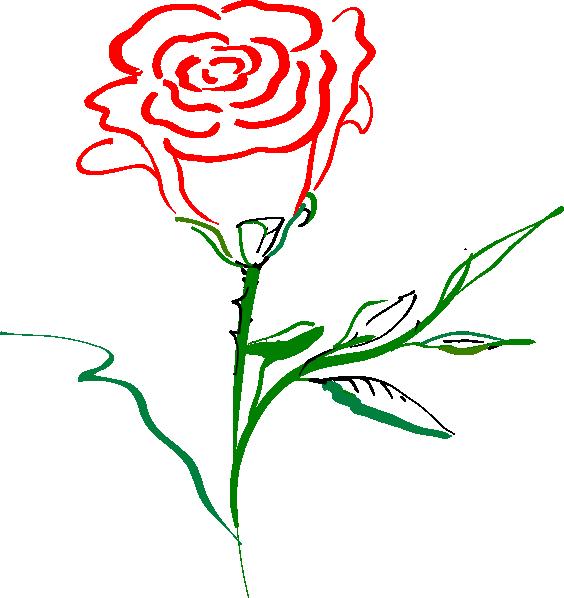 564x598 Rose Outline Clip Art