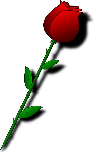 366x592 Rose Red Flower Clip Art Free Vector In Open Office Drawing Svg