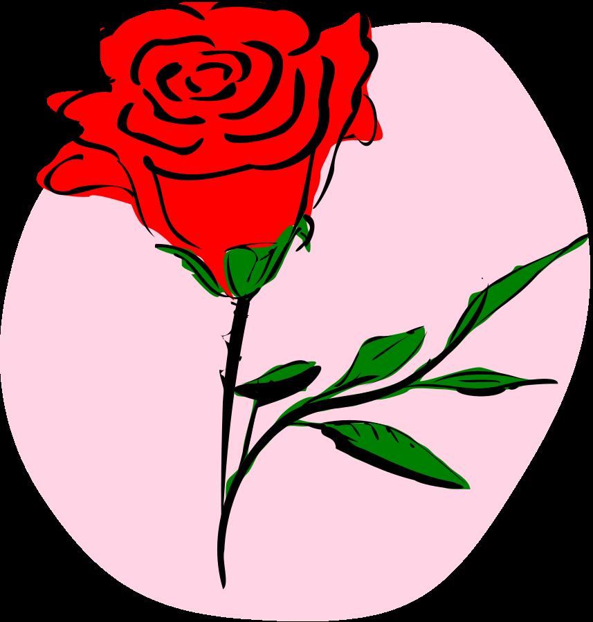 857x900 Rose Clipart Art Design