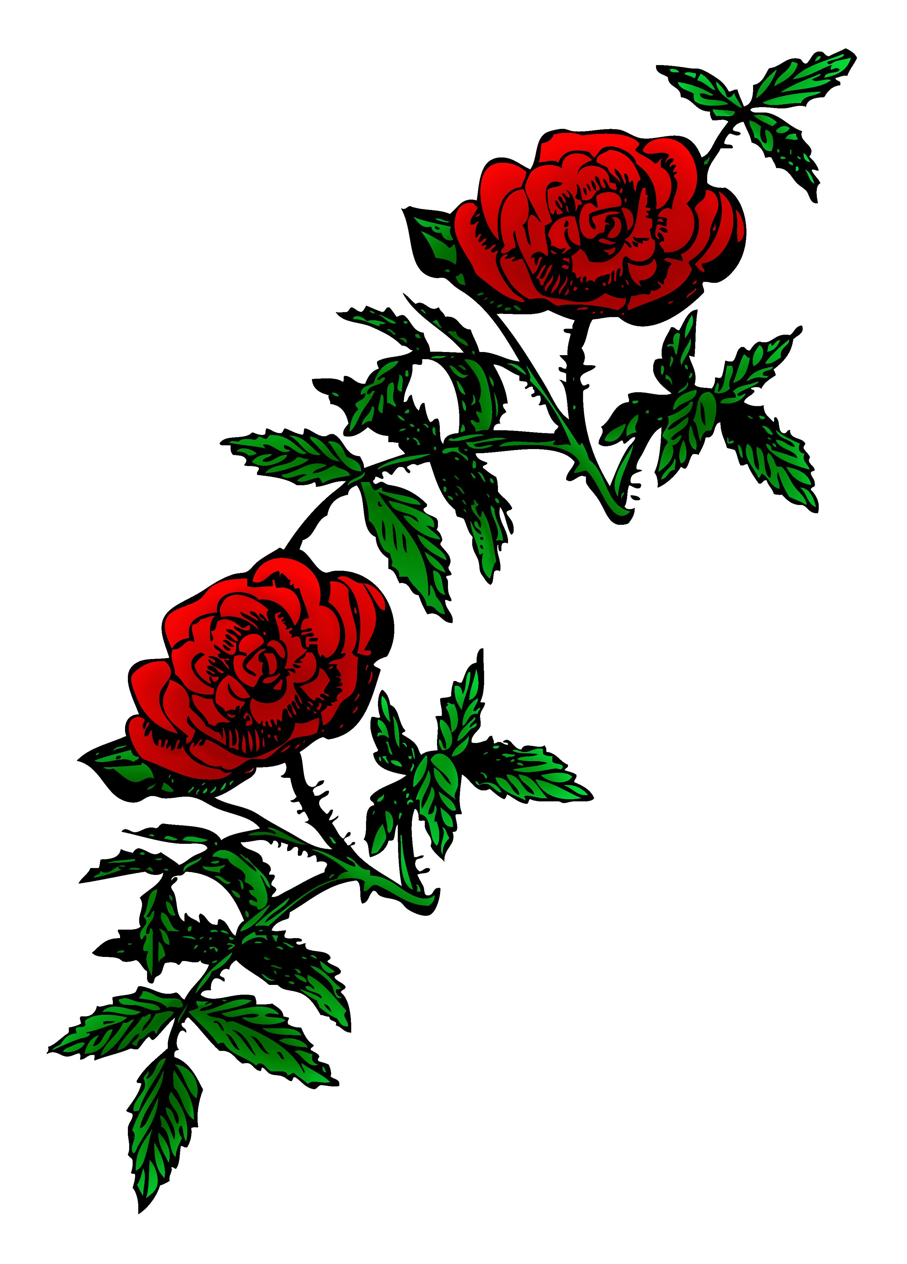 2887x4022 Roses Public Domain Rose Decoration Free Clip Art