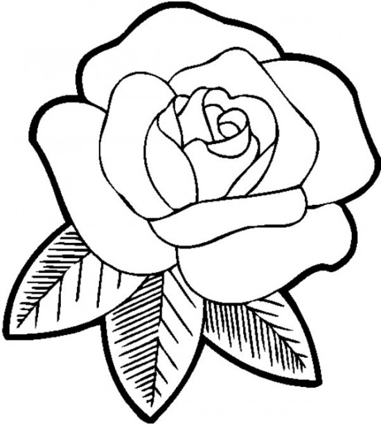 Rose Coloring Pages Free download best Rose Coloring Pages on