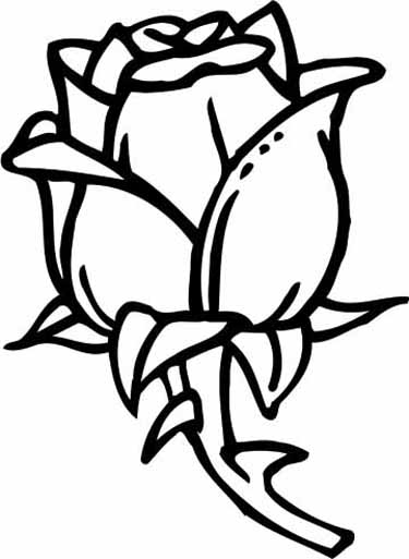 375x513 Online Coloring Pages Roses
