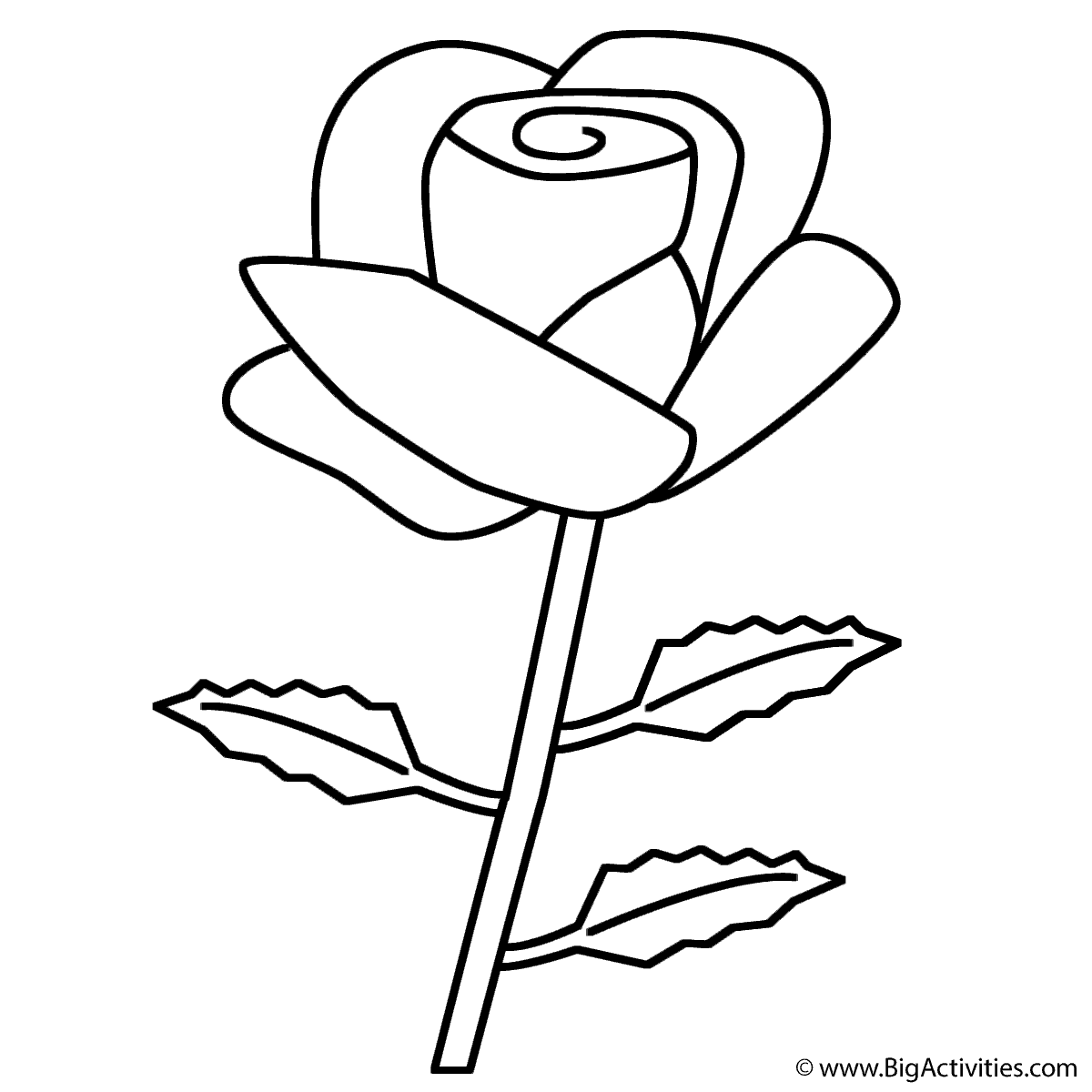 Rose Coloring Pages   Free download best Rose Coloring Pages on ...