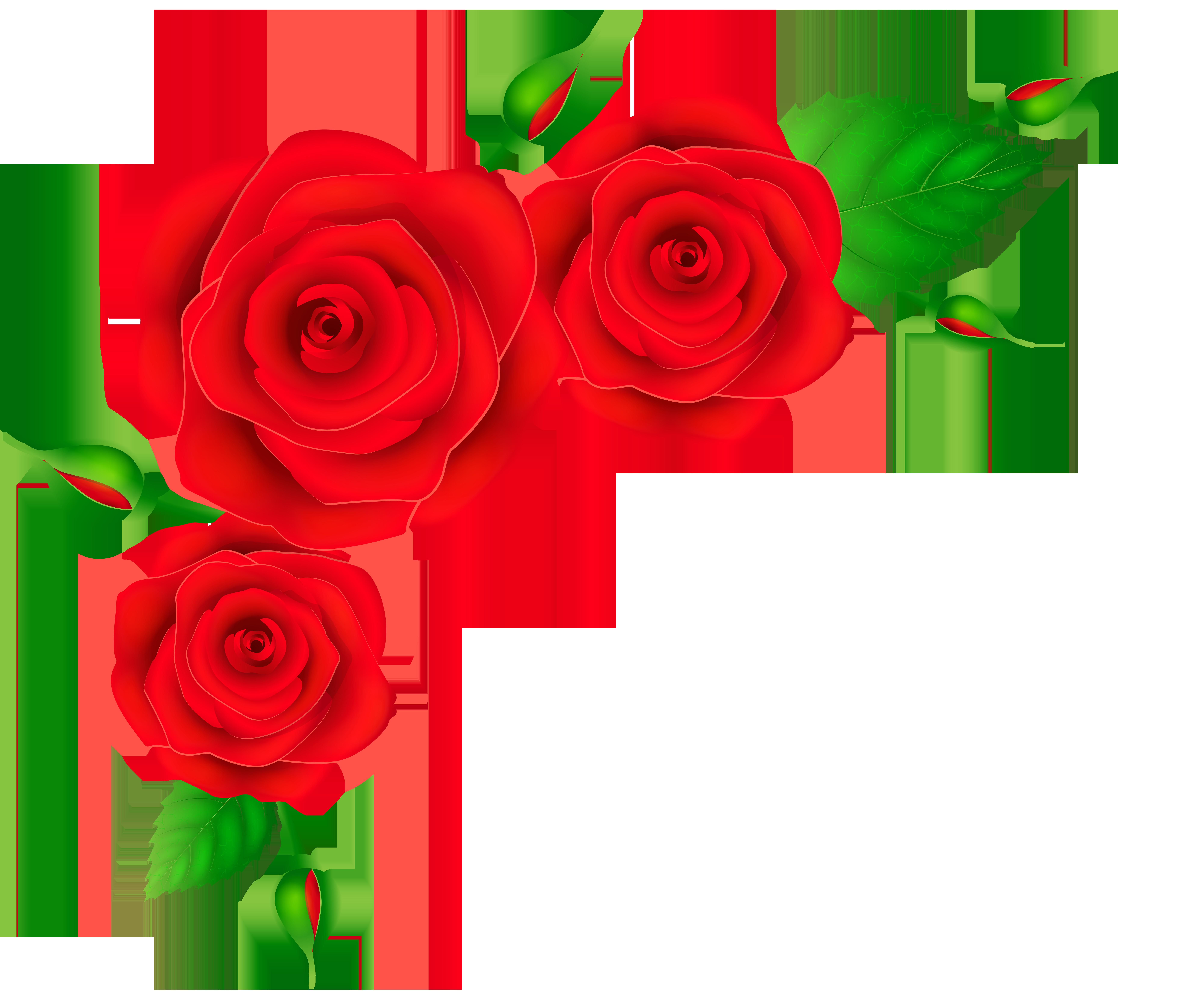 rose corner clipart free download best rose corner roses clip art black and white roses clip art images