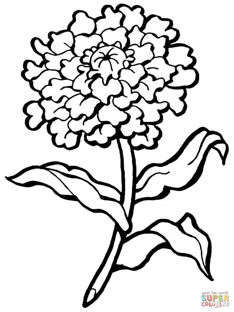 948x1264 Outline With Stem For Ue Rose Flower Sketch Easy Deconstructed