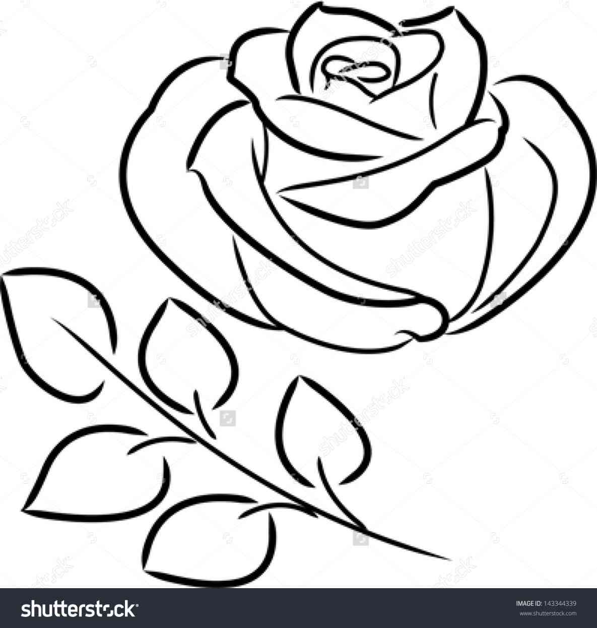 1185x1246 Rose With Banner Outline Rose Clipart Explore Pictures