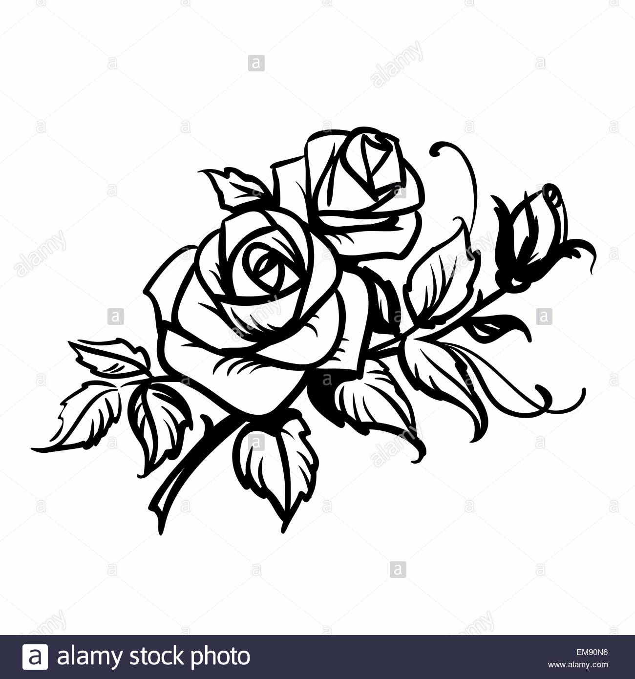 1300x1390 Roses. Black Outline Drawing On White Background Stock Vector Art