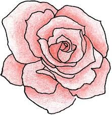222x227 Best Rose Outline Drawing Ideas Rose Tattoo