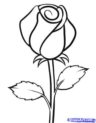 331x421 Coloring Pages Fabulous A Simple Rose Drawing Outline Drawings