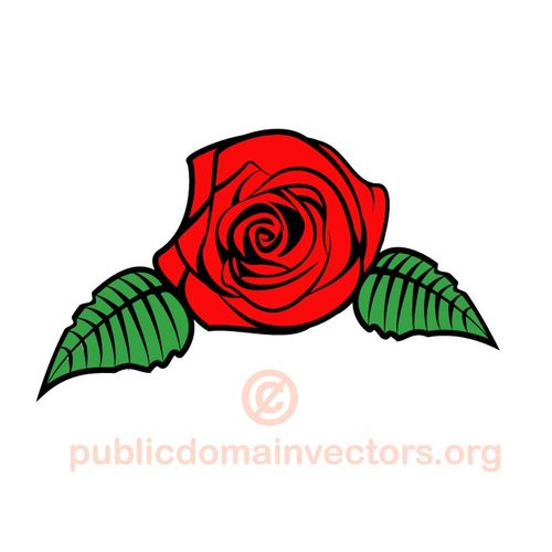 Rose Flower Clipart