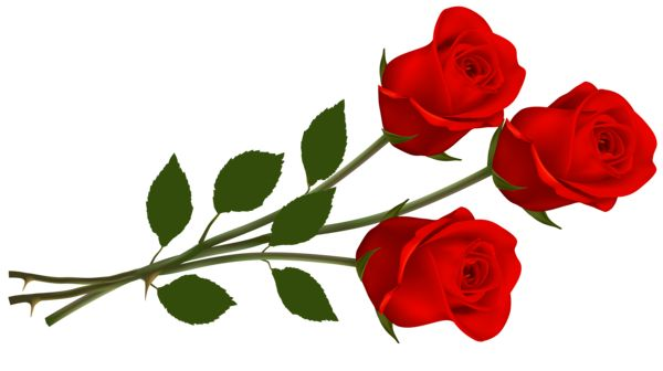 600x336 Red Roses Clipart Roses For You Red Roses