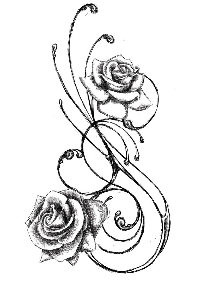 Rose Line Drawing
